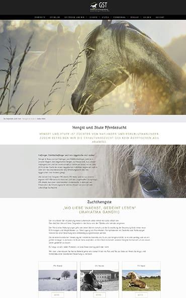 Webseitenerstellung für GST - Hengst und Stute
